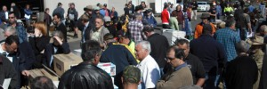 Why An Onsite Auction